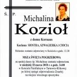 KOZIOL MICHALINA