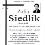 SIEDLIK ZOFIA