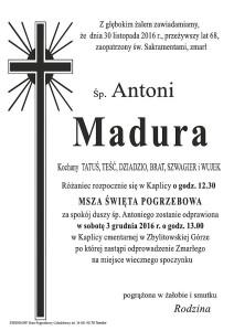 madura-antoni