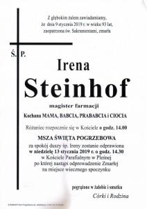 steinhof irena